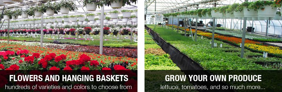 Grow your own produce